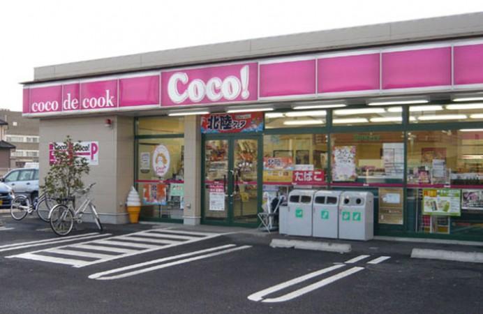 coco1-692x450
